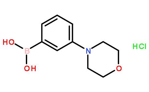 3-吗啉苯硼酸盐酸盐