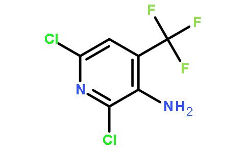 3-氨基-2,6-二氯-4-(三氟甲基)吡啶