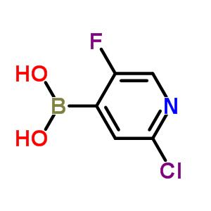 2-氯-5-氟吡啶-4-硼酸