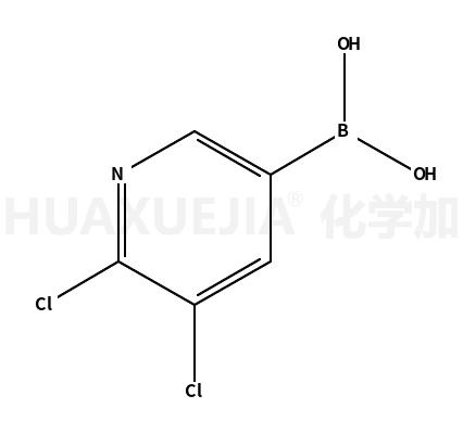2,3-二氯吡啶-5-硼酸