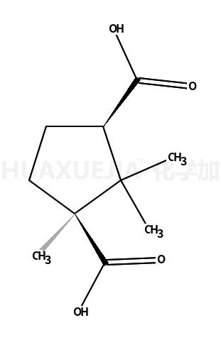 D-樟脑酸