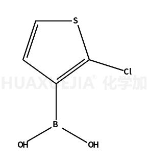 2-氯噻吩-3-硼酸