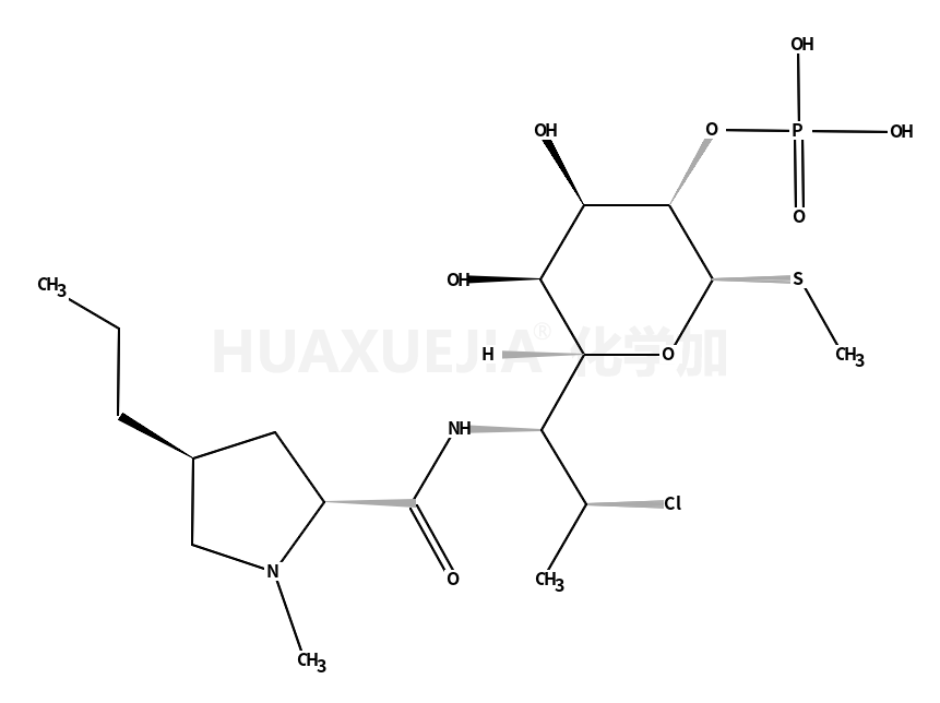 磷酸克林霉素酯