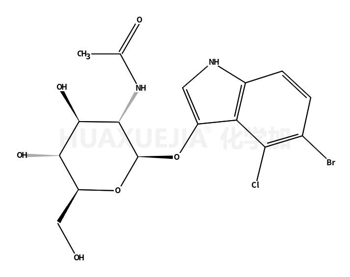 5-溴-4-氯-3-吲哚基-N-乙酰-beta-D-氨基葡萄糖苷