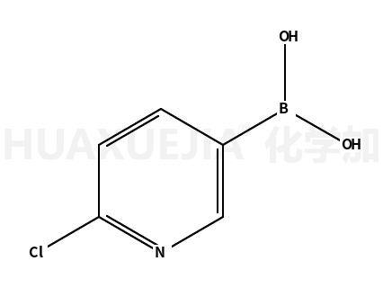 2-氯-5-吡啶硼酸