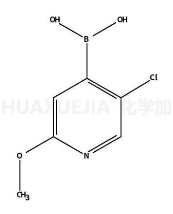 2-甲氧基-5-氯吡啶-4-硼酸