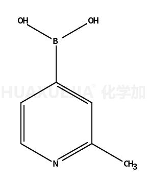 2-甲基-4-吡啶硼酸