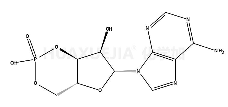 腺苷环磷酸酯