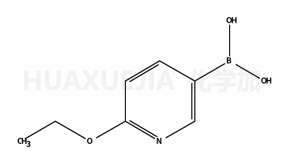 2-乙氧基吡啶-5-硼酸