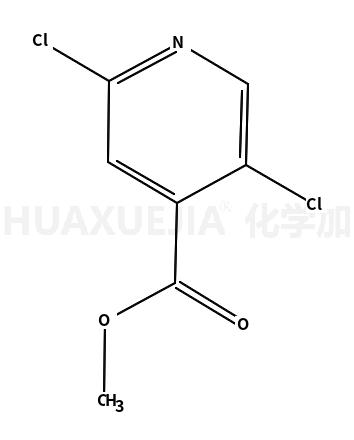 2,5-二氯异烟酸甲酯