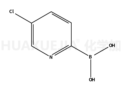 5-氯-2-吡啶硼酸