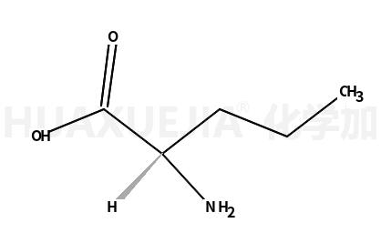 L-正缬氨酸
