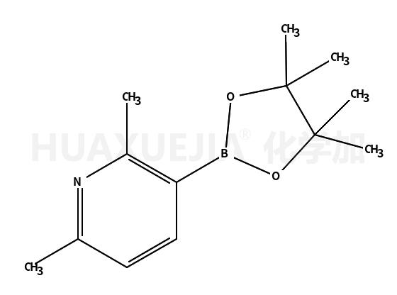 2,6-二甲基吡啶-3-硼酸频那醇酯