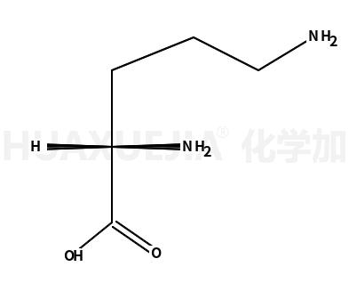 L-鸟氨酸