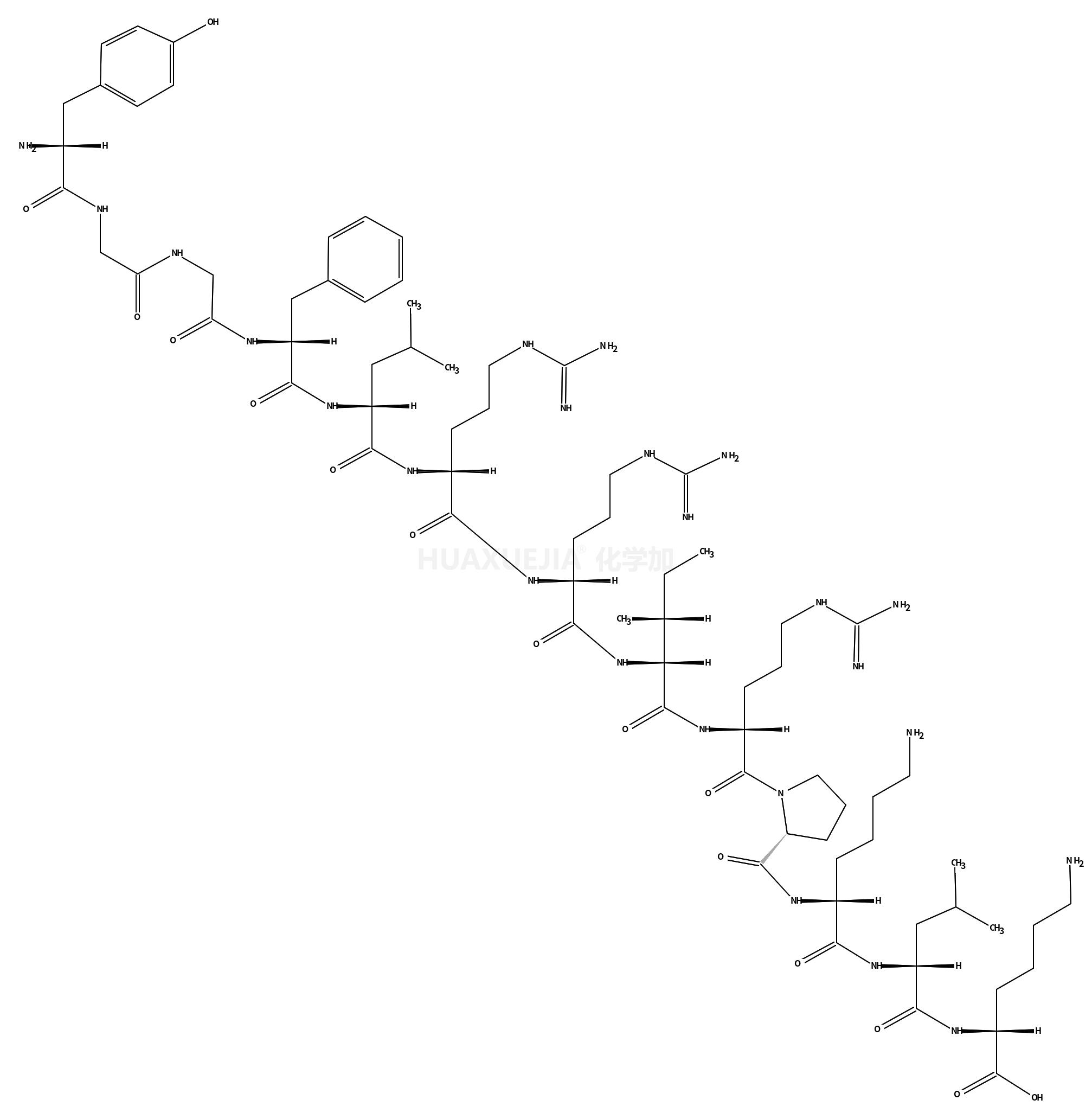 强啡肽 A (1-13)