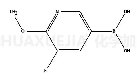 5-氟-6-甲氧基吡啶-3-硼酸