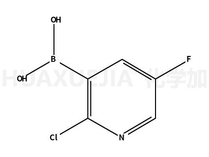 2-氯-5-氟吡啶-3-硼酸