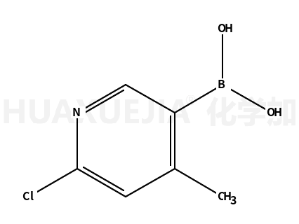 2-氯-4-甲基吡啶-5-硼酸