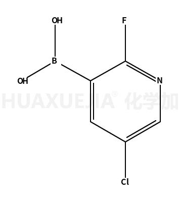 5-氯-2-氟吡啶-3-硼酸