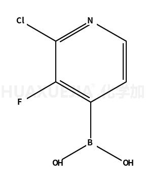 2-氯-3-氟吡啶-4-硼酸